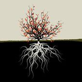 Ilustración gráfica de árbol con raíces — Vector de stock