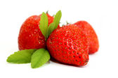 Strawberries fruits macro scene — Stock Photo