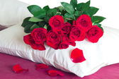 Red roses on a white pillow  — Stock Photo
