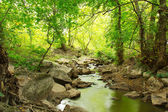 Landscape of river, rocks and green trees — Stock Photo