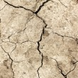 ������, ������: Cracked earth Global warming parched earth