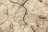 Cracked earth. Global warming - parched earth — Stock Photo