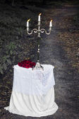 Silver candlestick on a white table with a red roses in a forest — Stok fotoğraf