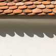 Shingle — Stock Photo #21109933
