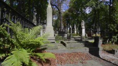 старое историческое кладбище повонзки в варшаве, польша — Стоковое видео