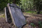 Historic Jewish cemetery in Warsaw, Poland — Stock Photo