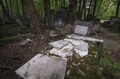 Old, historic Jewish cemetery in Warsaw, Poland — Stock Photo