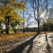 Autumn park during sundown - Stock Photo