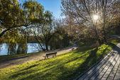 Herfst landschap in het park — Stockfoto
