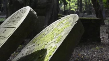 ワルシャワ、ヨーロッパの歴史的なユダヤ人の墓地で古い墓 — ストックビデオ
