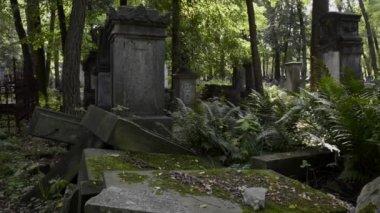 Old graves at historic Jewish cemetery in Warsaw — Stock Video