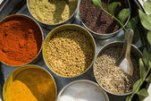 Various indian spices in metal bowls on try — Stock Photo