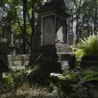 Graves at historic Warsaw cemetery, Powazki in Warsaw — Stock Video #18489927