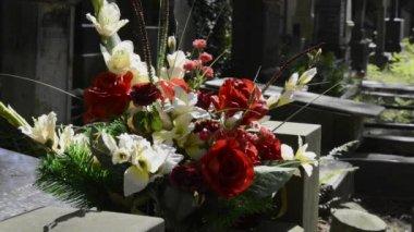 ボヴォンズキ ワルシャワの歴史的な墓地の墓に新鮮な花 — ストックビデオ