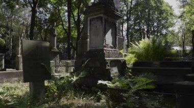 Tombe nel cimitero storico di varsavia, powazki a varsavia — Video Stock