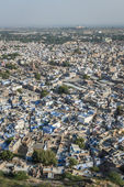 Blue houses in the city of Jodhpur, India — Stock Photo