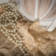 Feminine bra, perlas and underclothes — Stock Photo