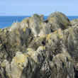 Rocky Irish coastline — Foto de Stock