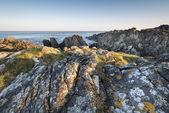 Irish rocky coastline — Stock Photo