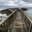 Stock Photo: Wooden path on North Irish coastline