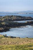 Paisaje rocoso de irlanda del norte — Foto de Stock
