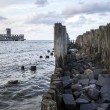 Old wooden pier and ruins of torpedo factory — Stock Photo