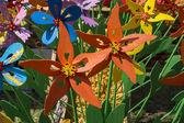 Multi colored pin wheels — Stock Photo