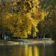 Autumn colorful foliage over lake in Lazienki Krolewskie Park in Warsaw, Poland — Stock Photo