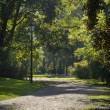 Sunny, autumn day in tye Park Saski in Warsaw, — Stock Photo