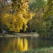 Autumn colorful foliage over lake in Lazienki Krolewskie Park in Warsaw — Stock Photo