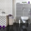 Modern bathroom with WC — Stock Photo #42629451