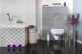 Modern bathroom with WC — Stock Photo