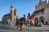 Horse drawn carriage on Old Town square in Krakow, Poland. — Zdjęcie stockowe