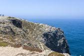 Rocky coastline in Sagres, Portugal — Stock Photo