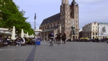 Horse drawn carriages with guides in front of the St. Mary's Basilica in Krakow, Poland — Video Stock