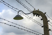 Barbed wire fence in Auschwitz II-Birkenau Concentration Camp — Stock Photo