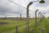 Barbed fence with lamp in Auschwitz concentration camp in Poland. — Stock Photo