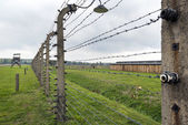 Electric fence in Auschwitz II extermination camp in Brzezinka, Poland. — Stock Photo