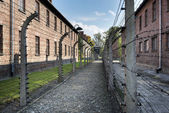Barbed wire fence in Auschwitz II concentration camp in Poland — Stock Photo