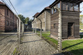 Outdoor Walkway Lined With Electrified Barbed Wire in Auschwitz Camp II. — Foto Stock
