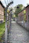 Corridor of electrified barbed-wire fences in Auschwitz II-Birkenau extermination camp — Foto de Stock