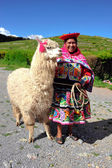 Peruvian Woman in traditional dress with Lama. — Stock Photo