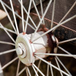 Spokes — Stock Photo