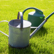 Watering cans — Stock Photo #34787189