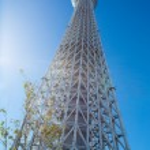 Постер, плакат: Tokyo Sky Tree