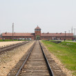 Auschwitz — Stock Photo #23068710