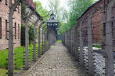 Auschwitz — Stock Photo