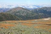 View from Mount Washington — Stock Photo