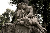 Mourning angel — Stock Photo