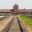 Auschwitz — Stock Photo #28950267